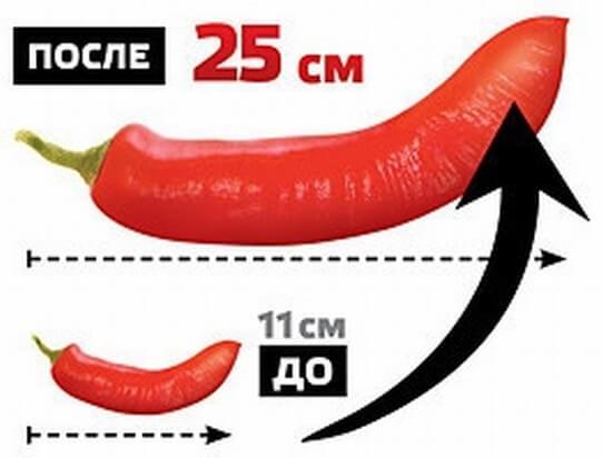 Titanium penisin uzunluğu və qalınlığı genişlənməsi üçün gel