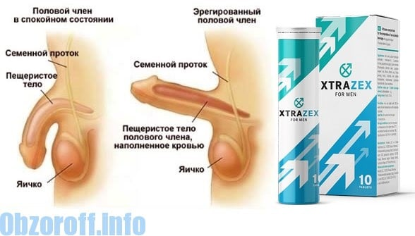 Pills XTrazex to increase potency