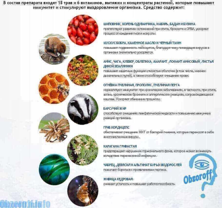 Immunetika pilienu sastāvs imunitātei
