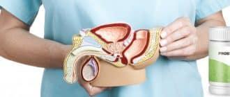 Prostatin capsule per il trattamento della prostatite