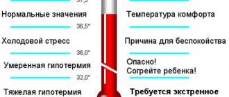 La temperatura nel bambino