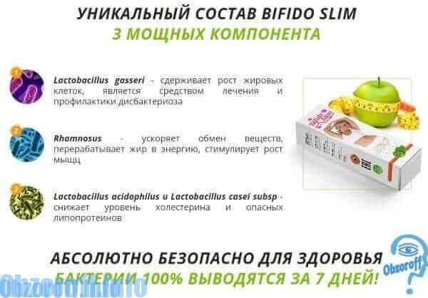 Composition Bifido Slim