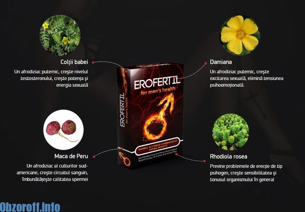 Cum acționează Erofertil asupra potenței