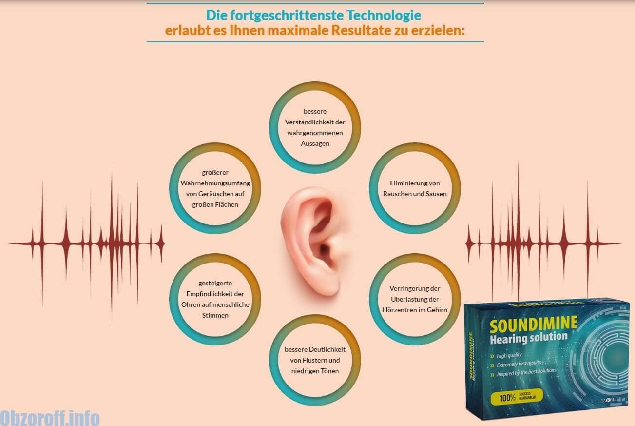 Eigenschaften des Hörgerätes SOUNDIMINE Earelief