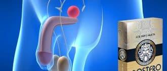 ProstEro tratamiento de la prostatitis y recuperación de la erección