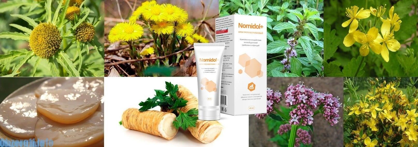 Какви са съставките на Nomidol