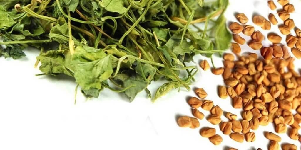 listya i semena shambaly - 3