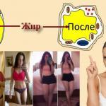 Комплекс Meta appetite control для похудения и контроля аппетита