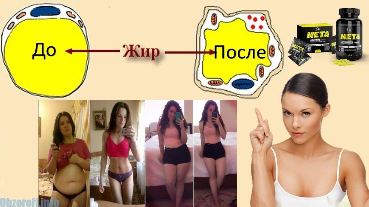 Kompleks Meta untuk penurunan berat badan dan kawalan selera makan
