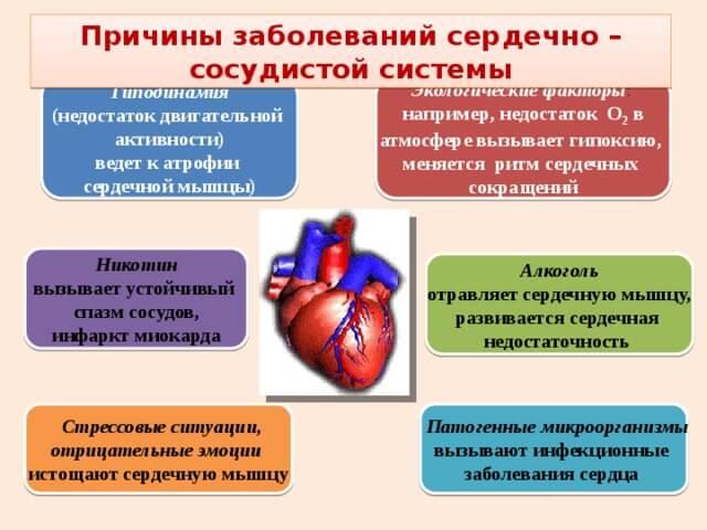 أسباب أمراض القلب والأوعية الدموية