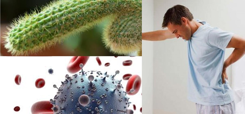 Maladies sexuellement transmissibles et brûlures dans l'urètre