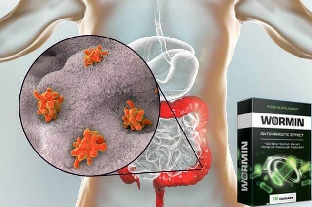 Parasiitide toime inimkehas